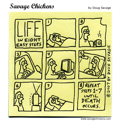 La vida del pollo